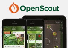 Open Scout