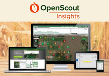 >OpenScout Insights