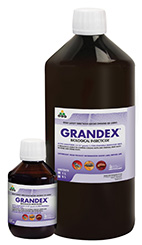 Grandex Product shot_Purple web